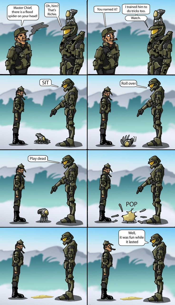 Master Chief's pet #1