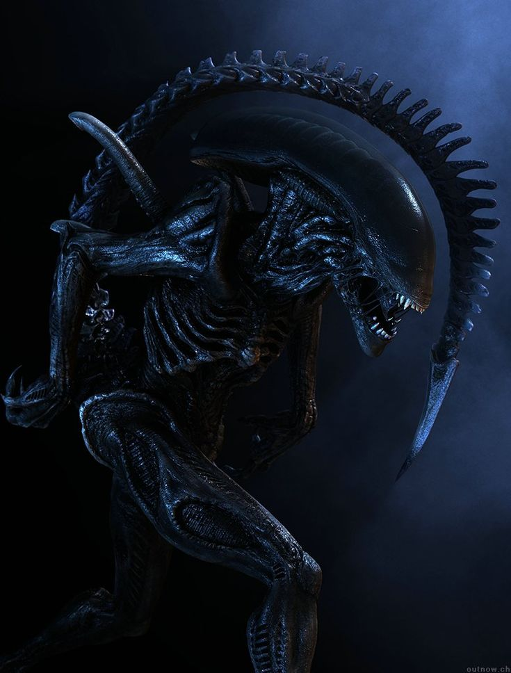 aliens vs predator kickass