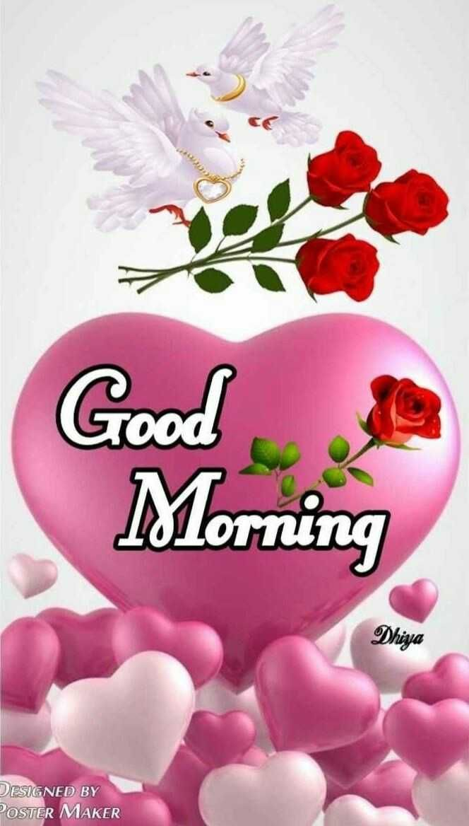 Good Morning Good Morning Dhiya Designed By Poster Maker Sharechat Good Morning Happy Sunday Good Morning Flowers Good Morning Greetings