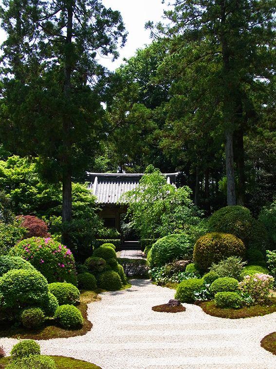 龍潭寺 補陀落の庭。白砂は5本指のように見えるところから浜名湖の庭とも。沙羅双樹の木も植わっててとてもきれい。