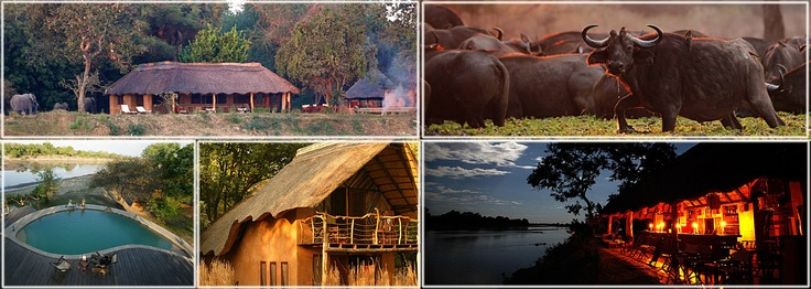 Track River Camp. Zambia. I love it!
