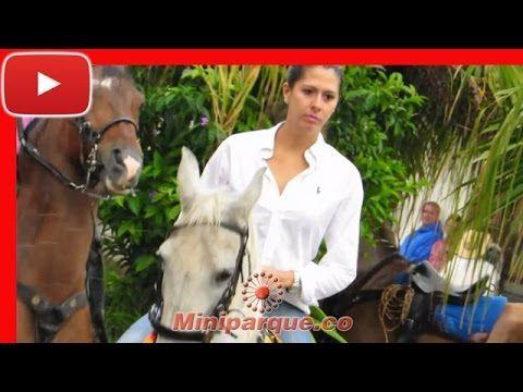 Asombroso desfile con lindas mujeres horse cabalgata sevilla valle 2016 video HD 112