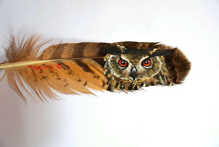Feather owl