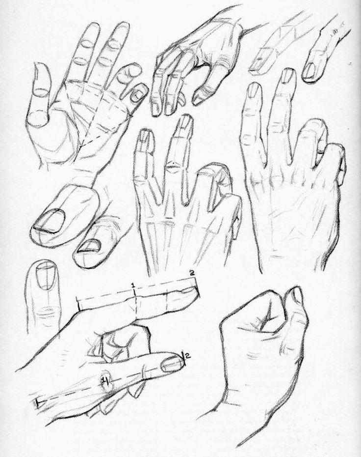 come si disegnano le mani secondo Andrew Loomis - Circolo d'Arti ...