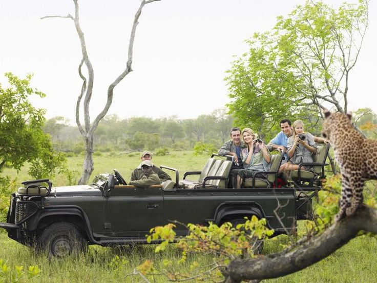 South African Safari in Capetown. | Live Auction Ideas | Charity Event | Benefit Auction Items | Gala Auction | Event Planners can find more live auction ideas here: http://www.timdecker.com/blog/live-auction-ideas-charity-event/ #eventprofs #eventplanning