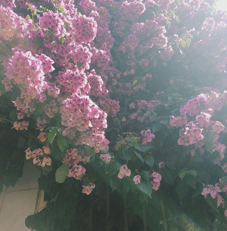 flowery.