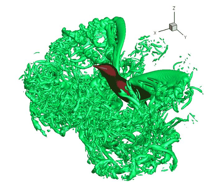 Hummingbird Wings Move Differently than Birds. When they hover, hummingbirds move their wings more like a buzzing insect than a flapping bird. But, unlike tiny insects, hummingbirds are large enough to stir up the air more violently as they move. Now scientists have attempted to model exactly how hummingbird wings interact with the air as they hover.