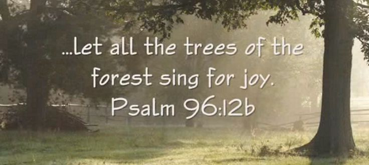 Image result for scripture verses about nature