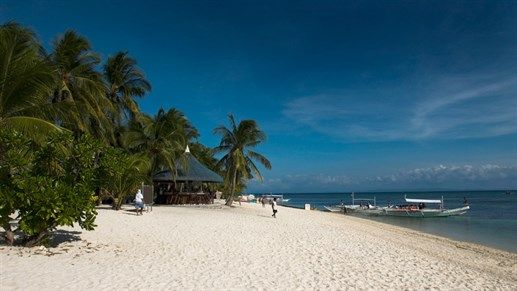 Malapascua island  Malapascua är också ett stort dragplåster för dykning i världsklass. Ön ligger norr om Cebu och du tar dig hit genom att segla från närliggande ön Maya. I det grunda vattnet simmar Alopias, hajar av släktet rävhaj som är av den lite mindre sorten. Att dyka med hajarna är såklart huvudattraktionen på ön! Här finns också oemotståndligt vackra stränder och lokalborna är kända för sina glada uttryck. Här kan du dessutom stanna längre än bara över dagen då det finns flera…