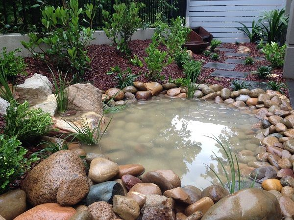 17 best images about courtyard landscaping ideas on pinterest