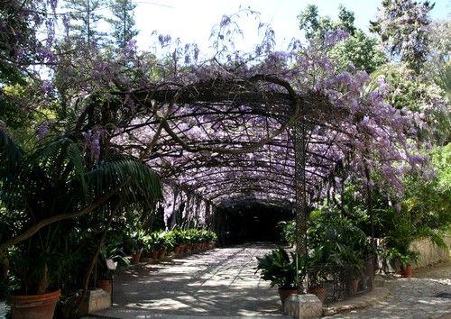 La Concepción Orto Botanico a Malaga :: FIORI&FORCHETTE