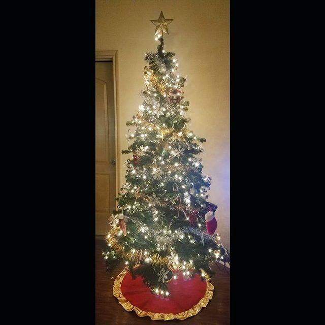 Our tree is up!  . . #honeymoonamerica #honeymoon #couple #couplesgoals #travel #destinations #life #trip #holiday #holidays #christmas #christmasdeco…