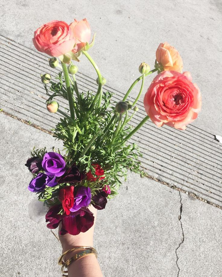 Downtown Campbell: Another day another success at the farmers market  #farmersmarket #freshblooms #freshcuts #blooms #flowers #ranunculus #anemones #flowerlover #weddings #weddingplanner #love #norcal #cali #westcoast #perksofcali  #happygirl #treatyourself #positivevibes #lovinglife #perfection by barielexa