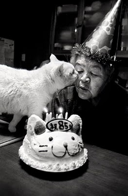 Photo story by Miyoko Ihara: 'Missao and Fukumaru' is a story about Mrs Missao, an 85 year old farmer, and her faithful companion, Fukumaru the cat. ☚