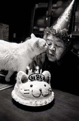 Photo story by Miyoko Ihara: 'Missao and Fukumaru' is a story about Mrs Missao, an 85 year old farmer, and her faithful companion, Fukumaru the cat. ☚