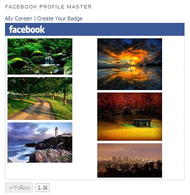 Facebook Profile Master