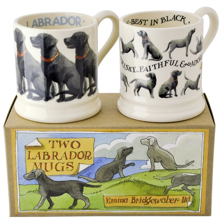 Black Lab 2 x 1/2 Pint Mugs Boxed
