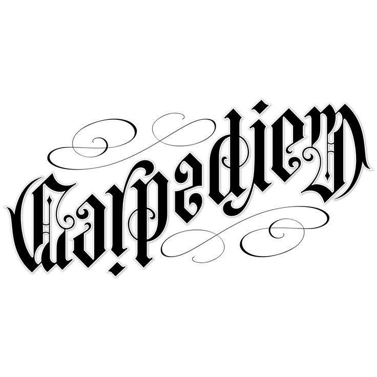 Carpe Diem Ambigram by John Langdon