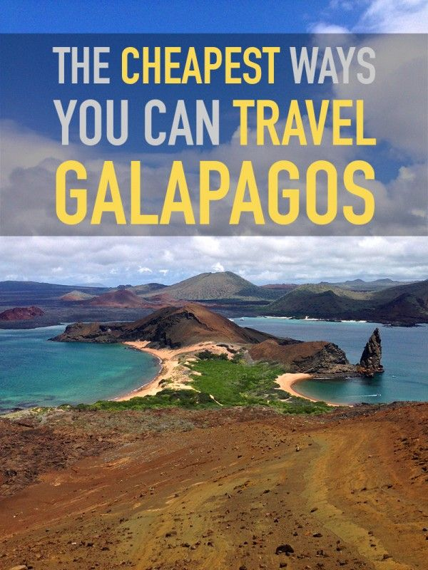 Galapagos Islands Travel Tips for a Budget Trip