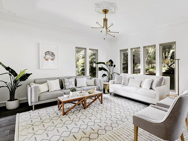 Dark Hardwood Floors Modern Rug Gray Couch Along With White Walls Furniture Placement Neutral Interior Design Hardwood Floors Dark