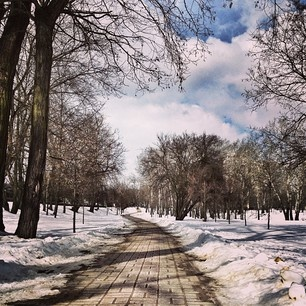 Winter in Poznań