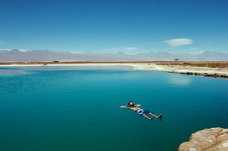Cejar lake/ Salar de Atacama, Chile. Image by Nicolas Amaro