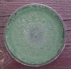 about trichoderma and benefits for agriculture http://goo.gl/Mvu76c