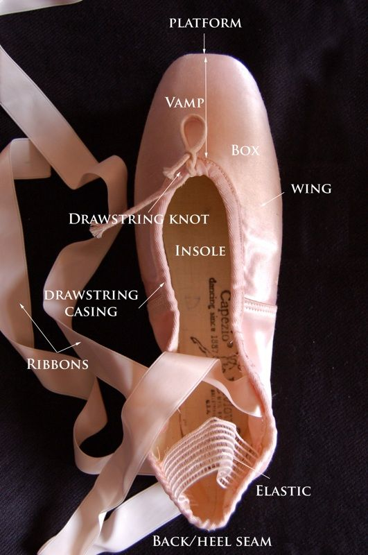 Top View of a pointe shoe. This article is  about the anatomy of a pointe shoe: how shoes are made and used...marvelous!   http://www.theballetbag.com/2009/12/28/dancing-shoes/#