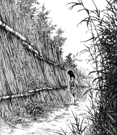 454 Best Images About Vagabond: 17 Best Images About Vagabond By Takehiko Inoue. On