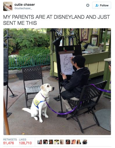 Katie about died at the picture, so she shared it on Twitter. It's now been retweeted over 50,000 times. | A Service Dog Got His Caricature Drawn At Disney And People Are Losing It