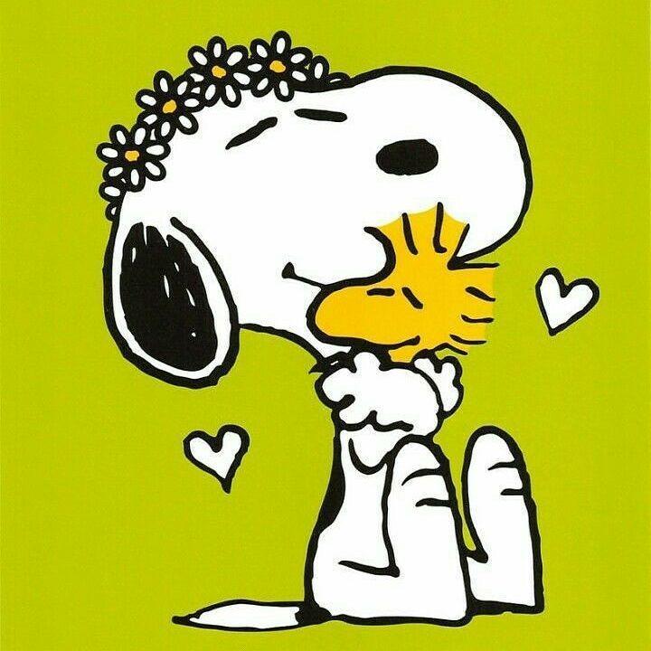 "Snoopy Love (@snoopy_truelove) on Instagram: ""Abraçar é encostar um coração no outro. #snoopy #woodstock #hugs #peanuts"""