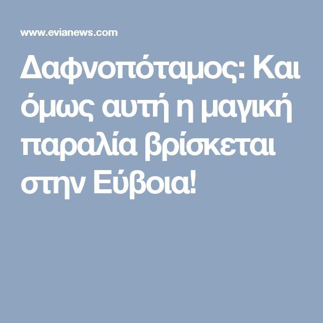 Δαφνοπόταμος: Και όμως αυτή η μαγική παραλία βρίσκεται στην Εύβοια!