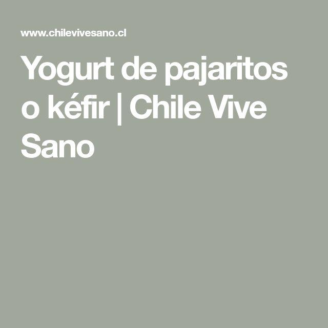 Yogurt de pajaritos o kéfir | Chile Vive Sano