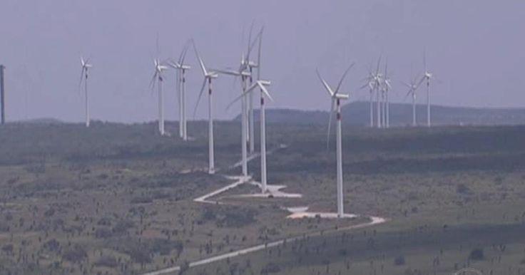 Primeiro parque híbrido de energia renovável do país é inaugurado em PE