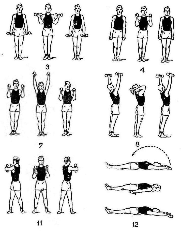 пол домашние упражнения с гантелями в картинках мод