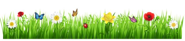 Весна траве с цветами PNG изображение клипарта