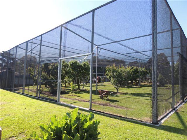 Bird Netting Fruit Tree Net Vine Nets Commercial Bird
