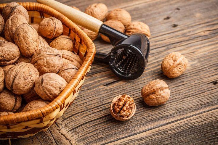 Připomínají lidský mozek a jsou taky tak důležité! Jak uchovávat vlašské ořechy, aby neztratily svou sílu? Babičky radily zavěsit je na suchém místě, moderní metody nabízejí zavaření nebo zmrazení.