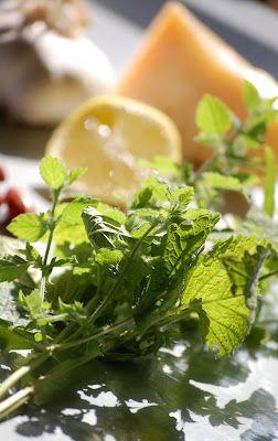 Citroenmelisse-pesto. Een tuin vol citroenmelisse? Met dit verrassende recept maak je er een heerlijk frisse pesto van.