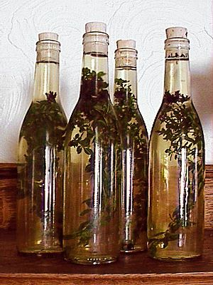 A professional herbalist tells How to Make Thieve's Vinegar To Protect from Respiratory Infections.  Personally, I use Young Living Thieves Essential Oil blend.  It's easier and more chemically stable.