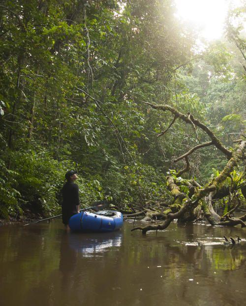 A River Sings