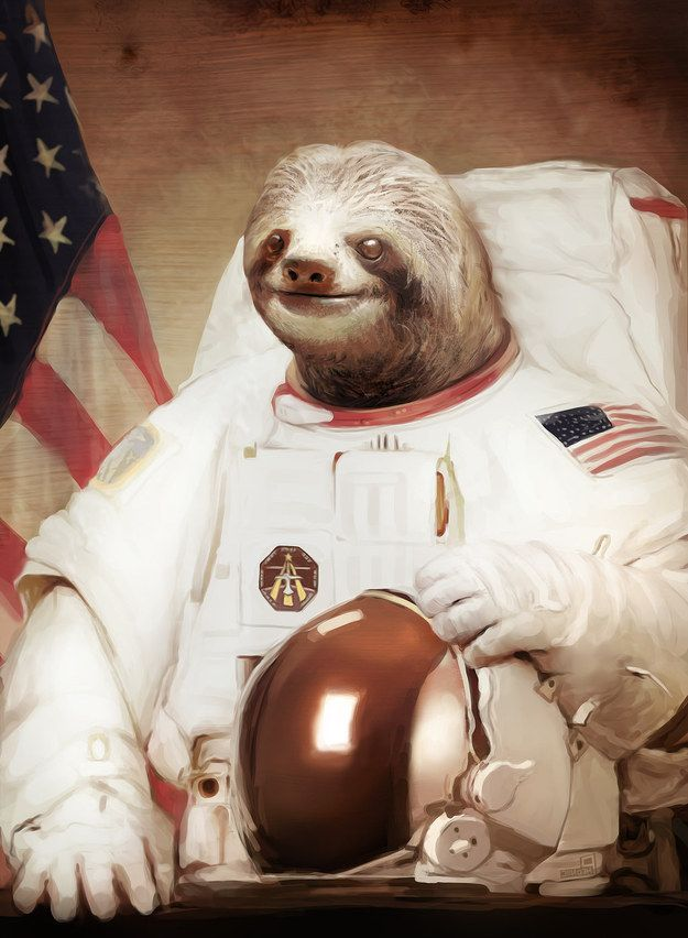 Astronaut sloth: | 25 Photos You Definitely Need To See Before You Die
