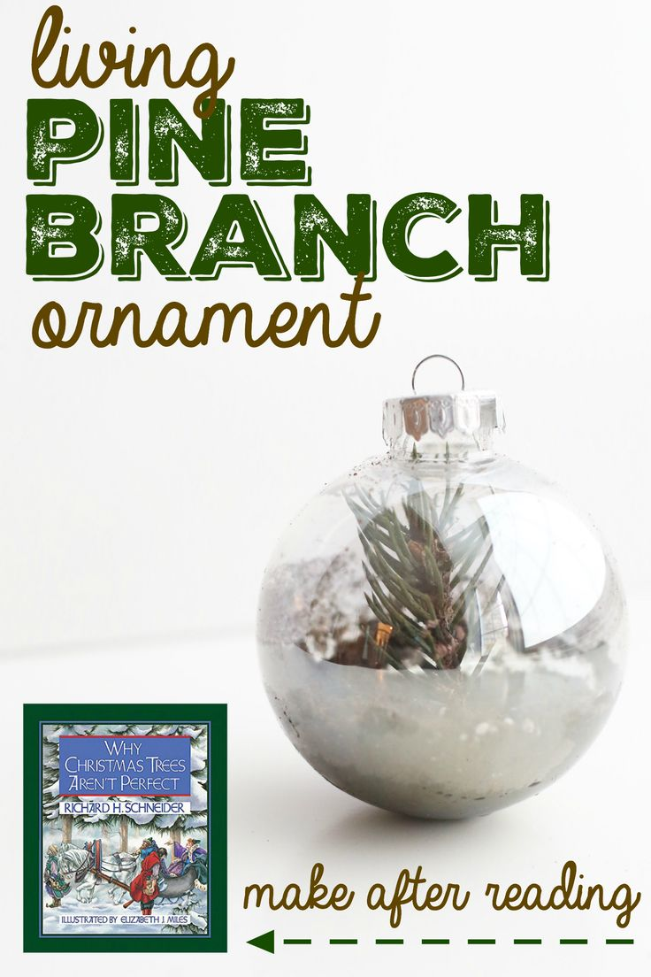 """Living Pine Branch Ornament to make after Reading """"Why Christmas Trees Are Not Perfect"""":  Take a clipping from an existing pine tree and start growing a new one in a clear ornament!"""