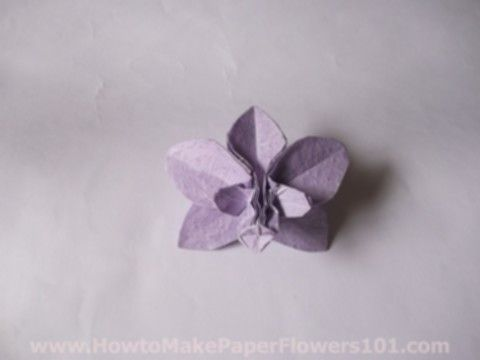 oragami orchid how to | learned making this origami orchid from a book named Origami Design ...