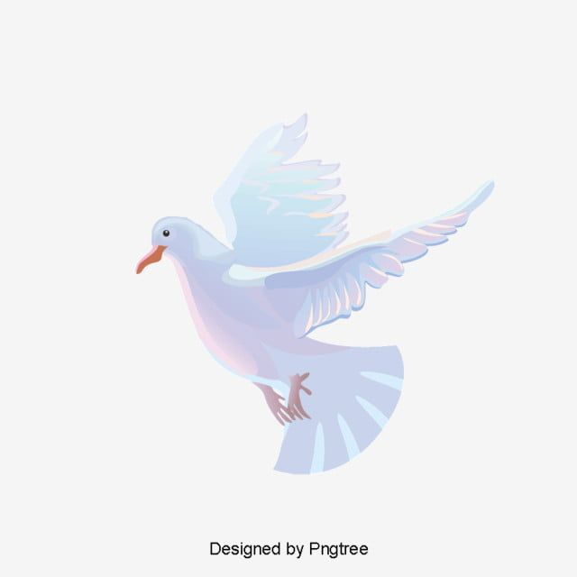 White Pigeon Vector Material White Vector Dove Vector Material Vector In 2020 White Doves Dove Images Vector