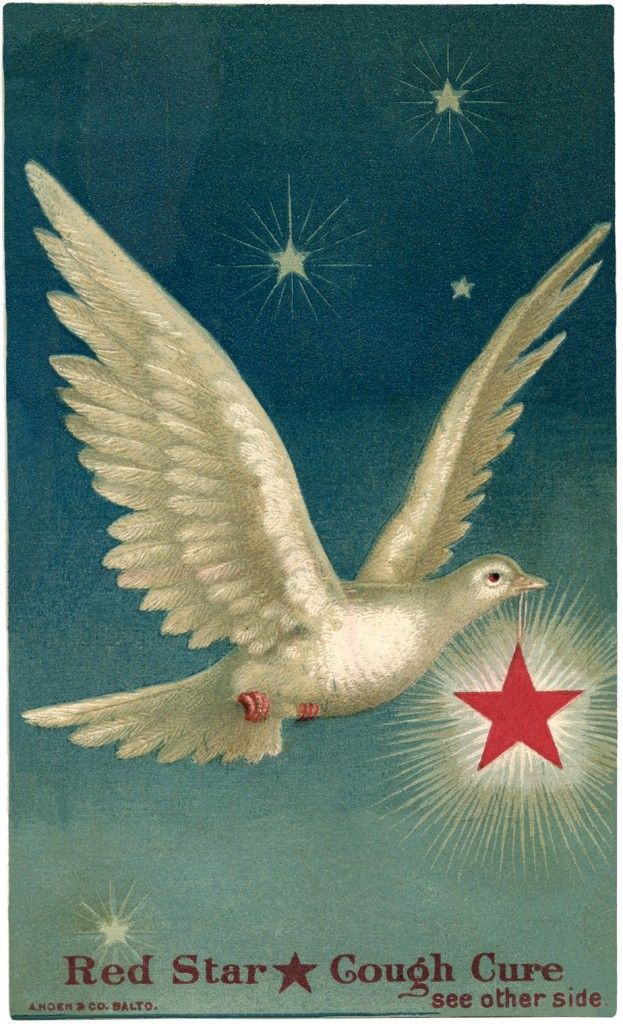 Beautiful Dove with Star Images! - The Graphics Fairy