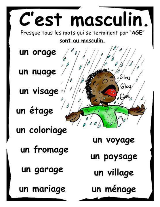Les mots masculins en français #Courconnect #Languages #Courses