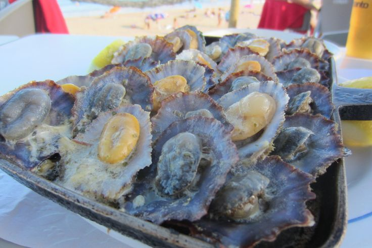 Delicious limpets