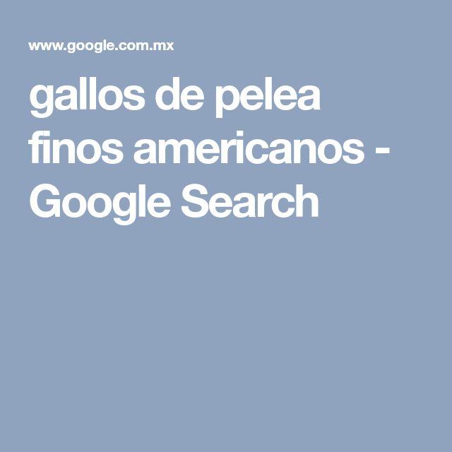gallos de pelea finos americanos - Google Search