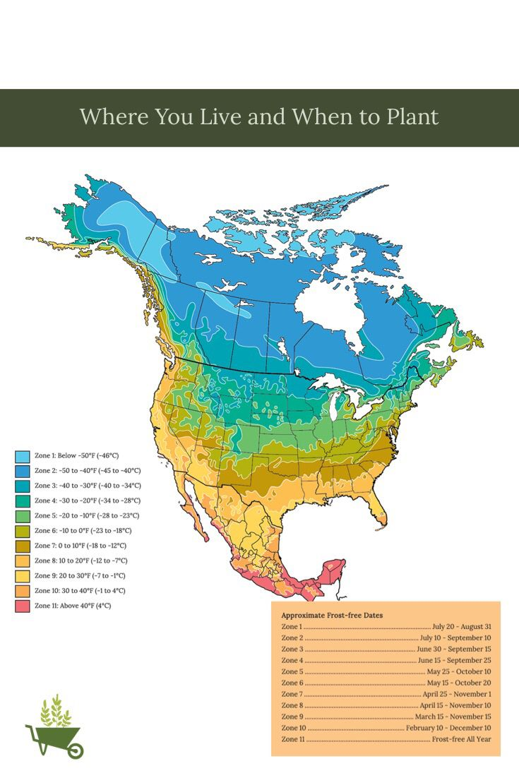 Planting And Harvesting Planner Plant Hardiness Zone Map Plant